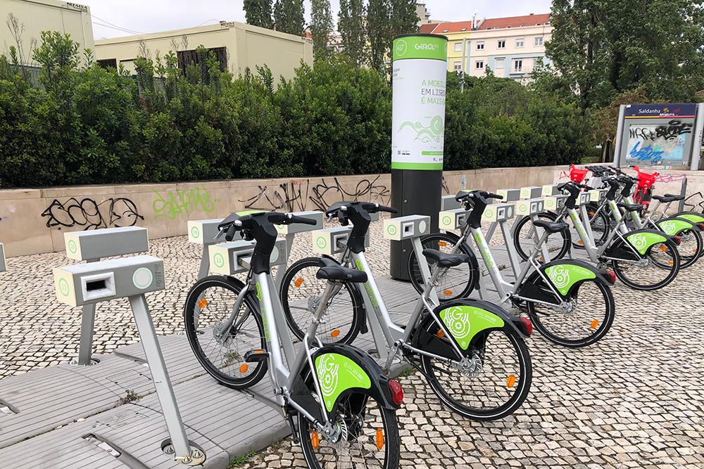 В Лиссабоне есть прокат обычных и электровелосипедов. Советую брать электрические, потомучто от езды на обычных по холмам Лиссабона быстро устаешь