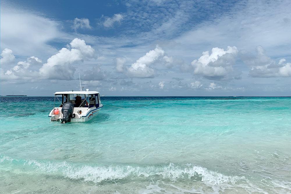 На такой лодке нас катали на экскурсии с черепахами
