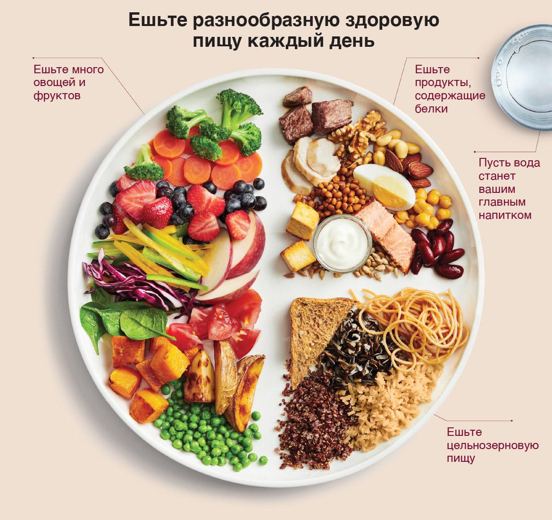 Я придерживаюсь правильного питания. Так должна выглядеть идеальная тарелка, по мнению канадских врачей. Половина приходится на овощи и фрукты, четверть — на цельнозерновые продукты, а другая — на источники белка