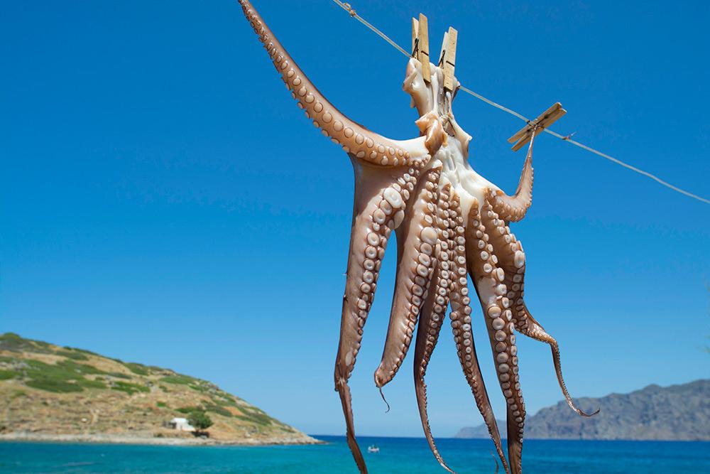 В прибрежных деревнях можно попробовать охтоподи — нежнейших осьминогов. Их жарят на углях, тушат в красном вине или маринуют