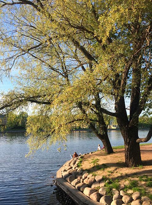 В Лопухинском саду местные жители гуляют с колясками и собаками, кормят уток в пруду и занимаются бегом. Летом по воскресеньям здесь даже играют духовые оркестры, подкоторые танцуют бабули и дети