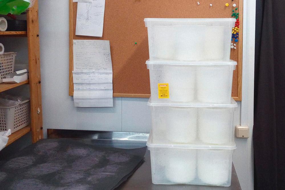 Сыр в контейнерах забираю домой
