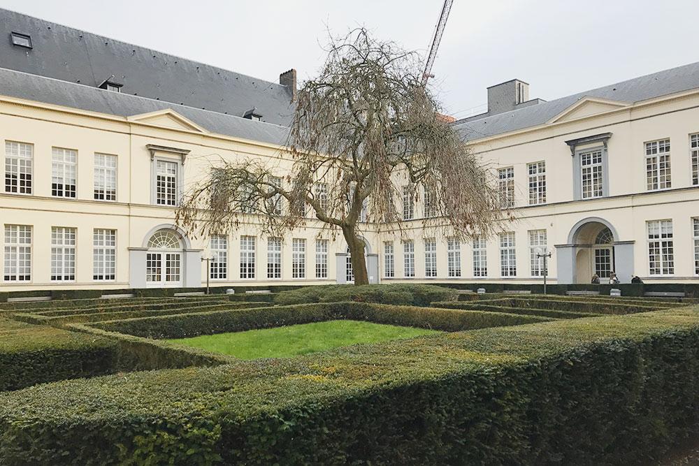 Факультет социальных наук, где я училась