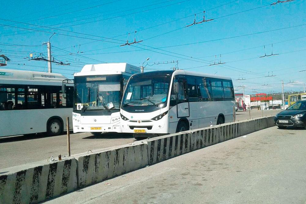 По внутригородским маршрутам курсируют новые автобусы
