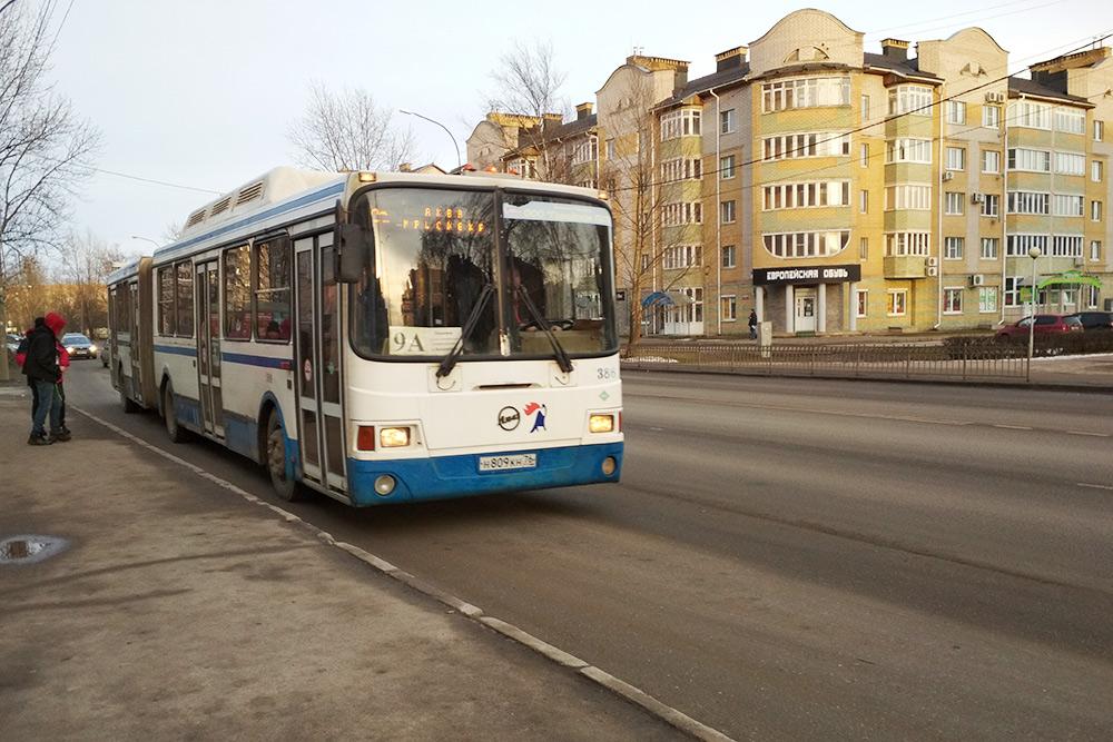 Ярославские номера на рейсовом автобусе в Великом Новгороде — это норма: по какой-то причине часть новых автобусов прибыла в город своим ходом уже с такими