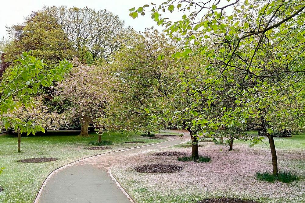 Городской парк в Суиндоне