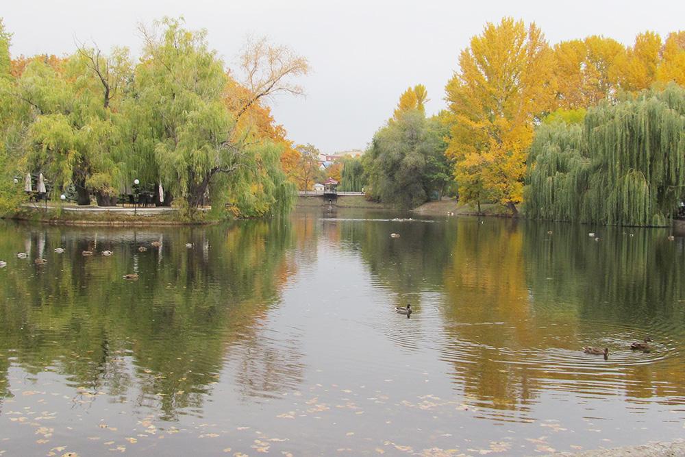 В центре парка находится большой пруд, в котором плавают утки