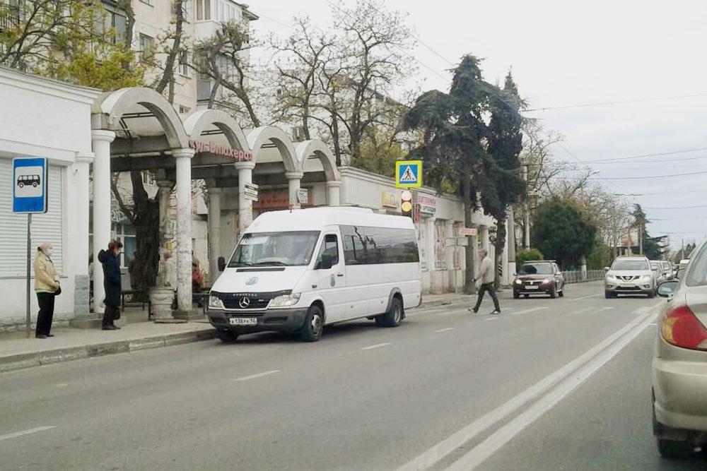 Частные маршрутки — это еще и микроавтобусы