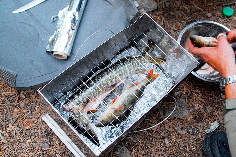 Коптим щуку и окуня. Северная рыба не сравнится с магазинной