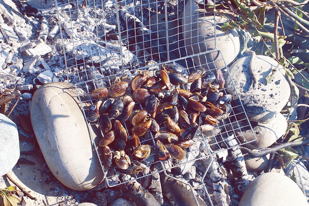 Пикник с мидиями можно устроить на пляже на окраине города. Кило мидий — 350 рублей