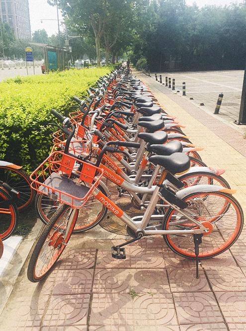 По куар-коду можно даже взять напрокат велосипед — оплату спишут через приложение