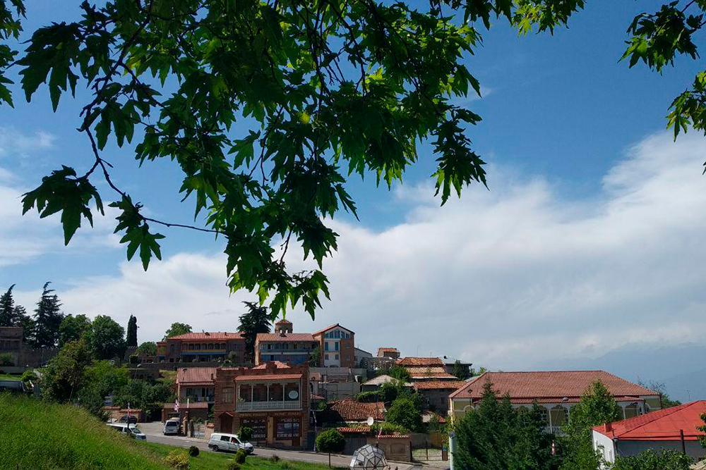 Вид на Телави со стороны 900-летнего платана, или чинара — так это дерево называют в Грузии