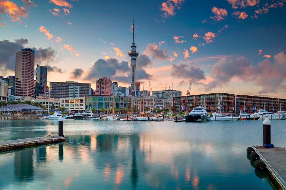 Центр Окленда, где находится большинство учебных заведений города. Фото: Shutterstock