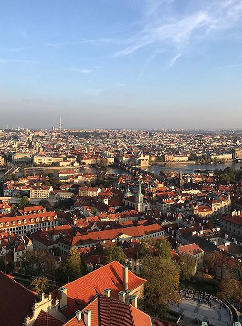 C башни можно осмотреть Прагу со всех сторон