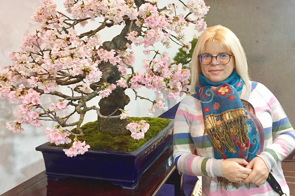 Бонсай — это искусство выращивания настоящего дерева, только в миниатюре