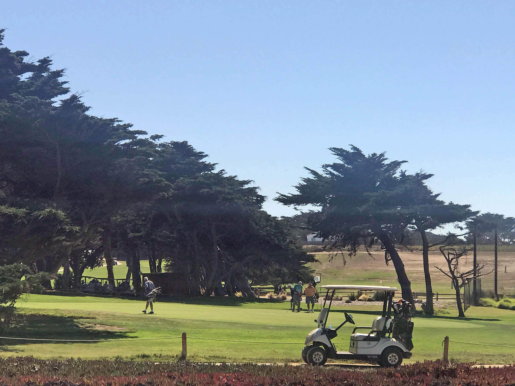 Еще здесь очень популярен гольф. В окрестностях Салинаса много полей для гольфа, все они огромные