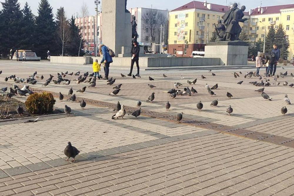 Площадь Партизан. В центре — памятник защитникам Брянска