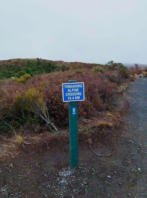 Длина всего трека — 19,4 км. С небольшими остановками мы преодолели маршрут за 8 часов