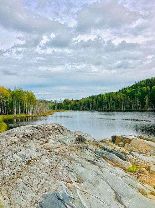 Территория отеля очень красивая: комплекс находится на берегу лесного озера. Фото: Григорий Мартишин