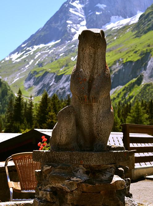 Скульптура альпийского сурка