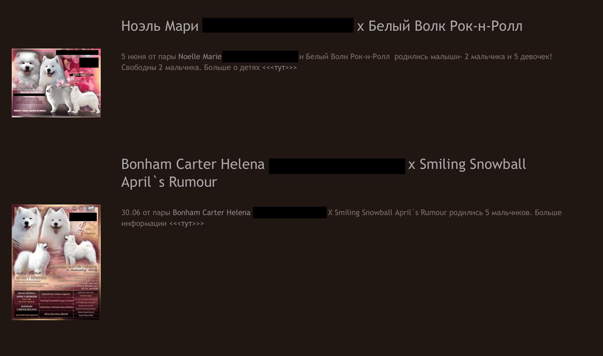 Объявления о щенках на сайте питомника. Все шесть покупателей нашли нас через него
