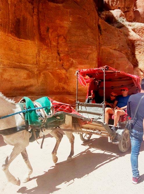 Если не можете идти, лучше взять багги с лошадьми. Стоимость поездки на троих составляет около 3000<span class=ruble>Р</span>