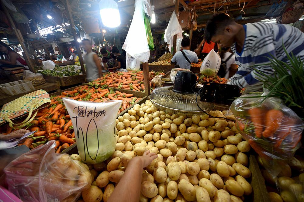 Картошка на Филиппинах — дорогое удовольствие, от 50 песо (60 р.) за 1 кг