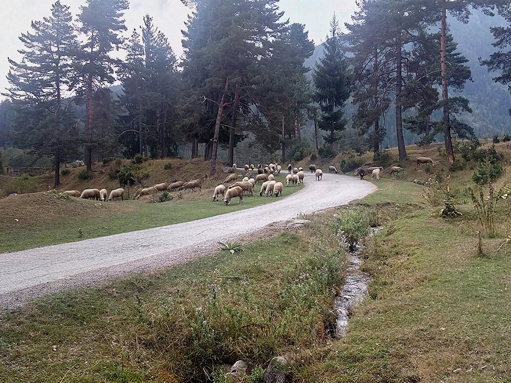 В горных деревнях красиво