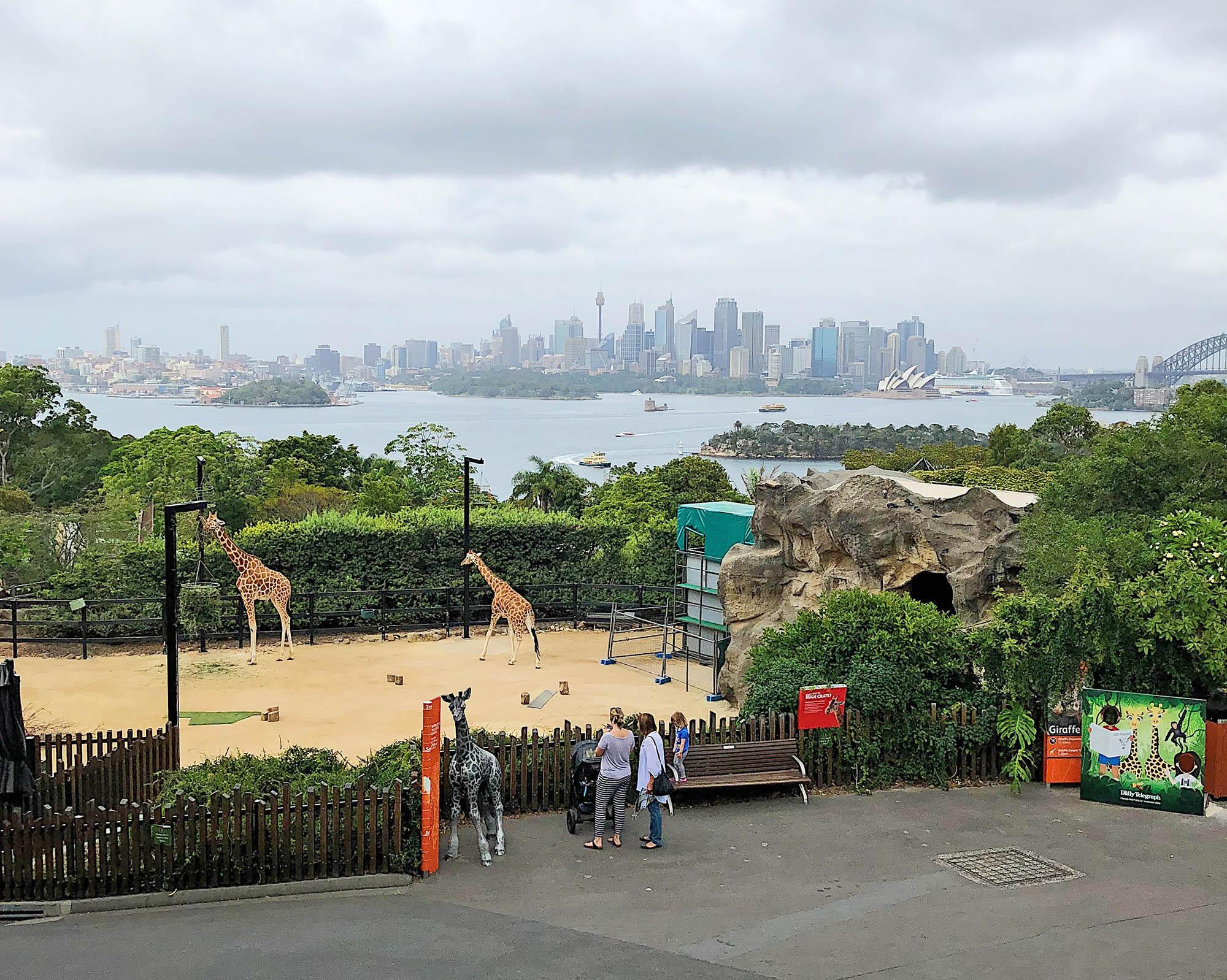 Сиднейский зоопарк