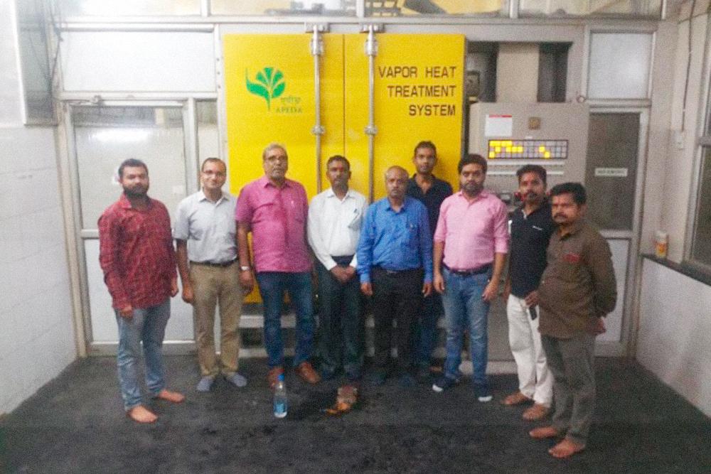 Это специалисты, которые отвечают за фитообработку манго. Они собрались возле помещения, где фрукт обдают паром от паразитов