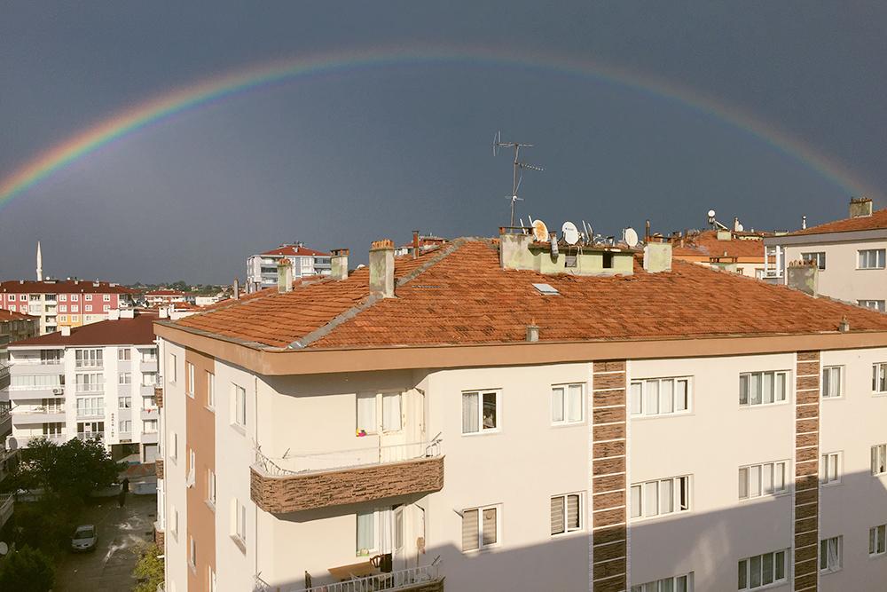 Вид из нашего окна. Мы живем на седьмом этаже