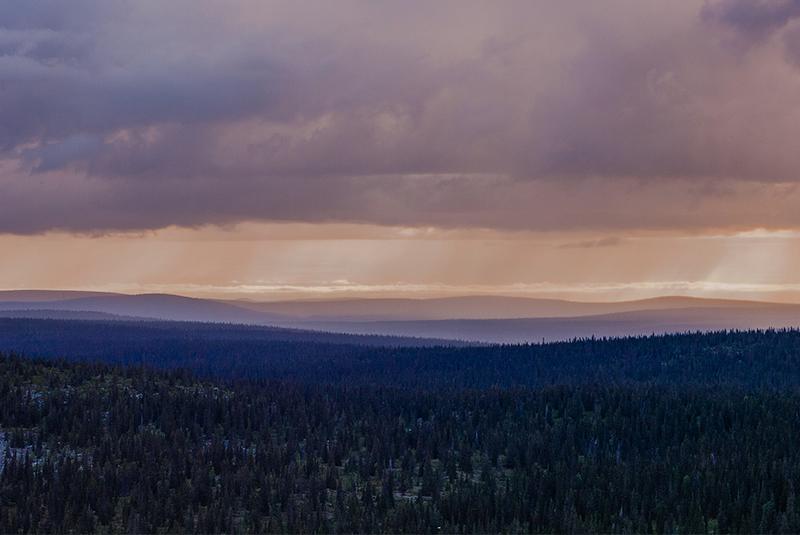 Источник: Joonas Sipilä/Flickr