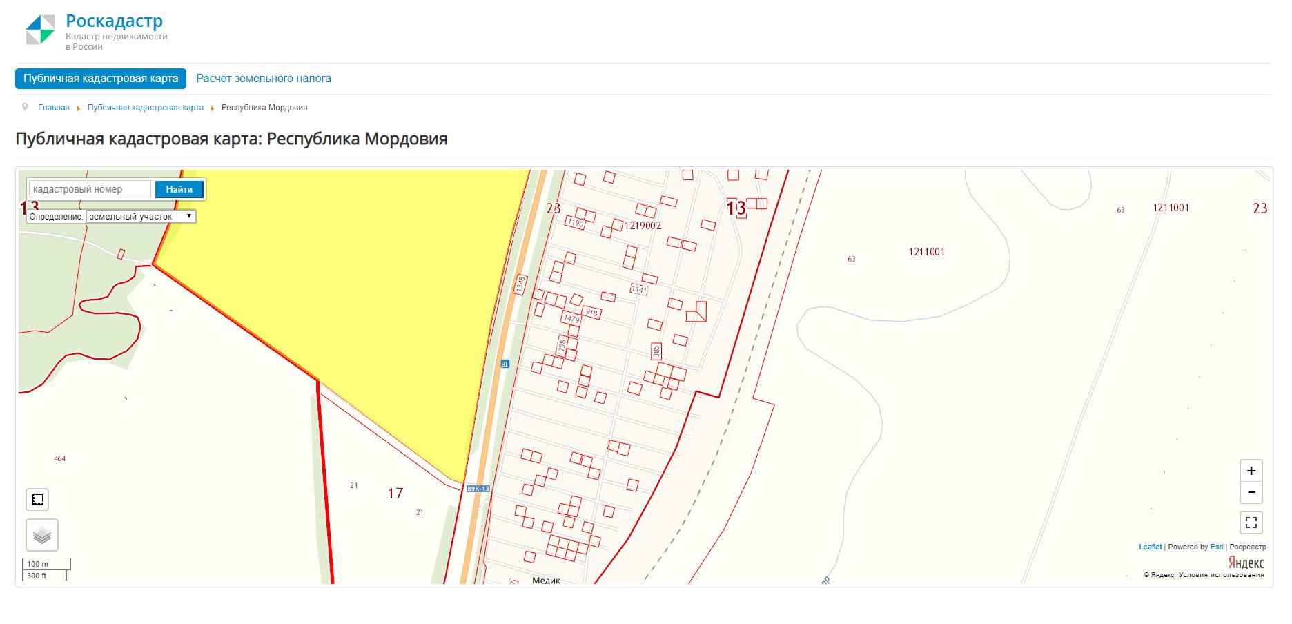 Публичная кадастровая карта. Оформленные земельные участки обведены красным