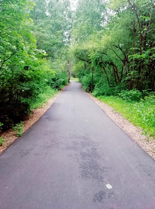 По таким дорожкам гулять приятно, когда погода хорошая. И на велосипеде можно покататься, тут есть прокат