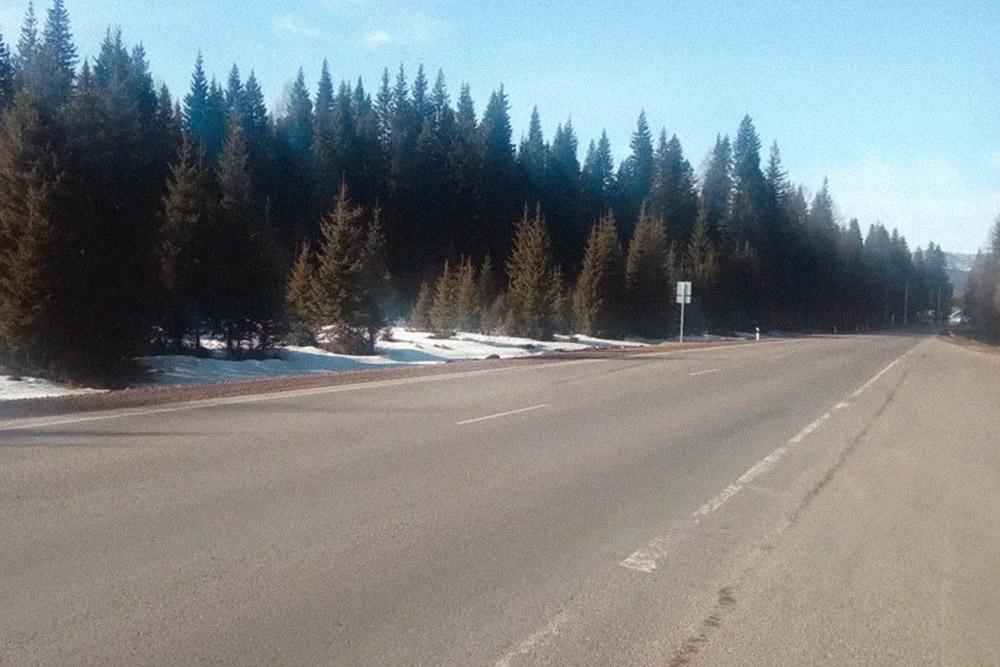 Таежный пейзаж на трассе. Качество дорожного покрытия очень хорошее: в Черногорске, где я сейчас живу, асфальт намного хуже. Нафото снег, потомучто дело происходит в марте