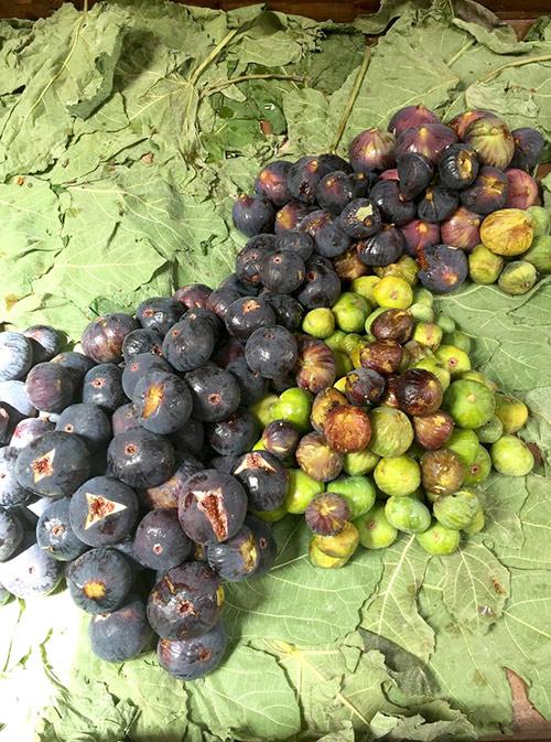 Инжир и опунция — плоды кактуса. Инжир очень сладкий, а опунция на любителя. Нам она показалась сухой и безвкусной