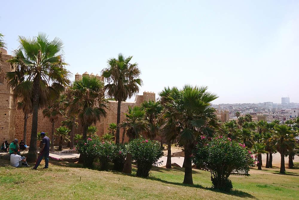 Касба Удайа и вид на Рабат. Около входа в крепость и внутри нее местные женщины навязчиво предлагают туристам разрисовать руки хной. Если решитесь, не забудьте договориться о цене заранее. Иначе можно узнать, что работа стоила 500 дирхамов (3750 р.)