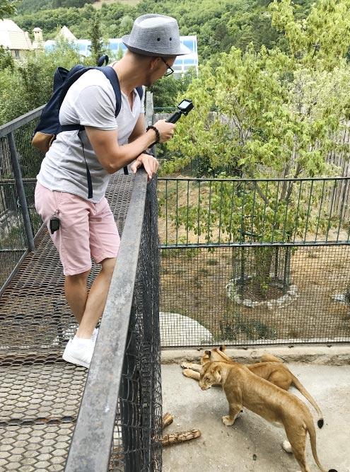 В зоопарке мы прошли по Адреналиновому мосту надклеткой со львами. Мне показалось, они бы легко до него допрыгнули, но, видимо, их хорошо кормят, поэтому они просто наблюдали за туристами
