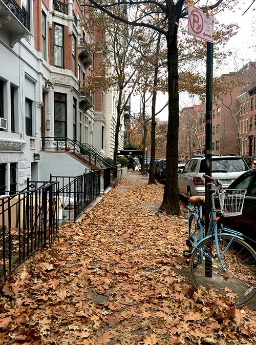 Осень и весна — максимально комфортное для жизни время в Нью-Йорке