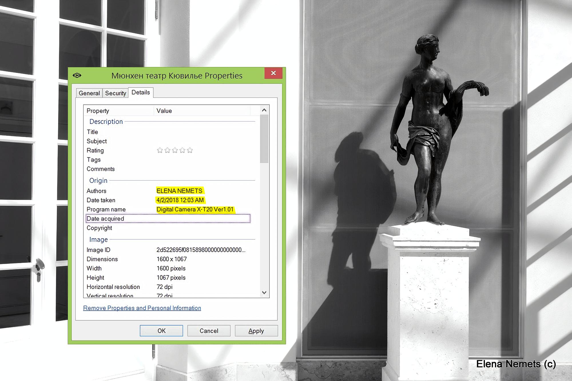 Так выглядит указание автора в EXIF-данных файла