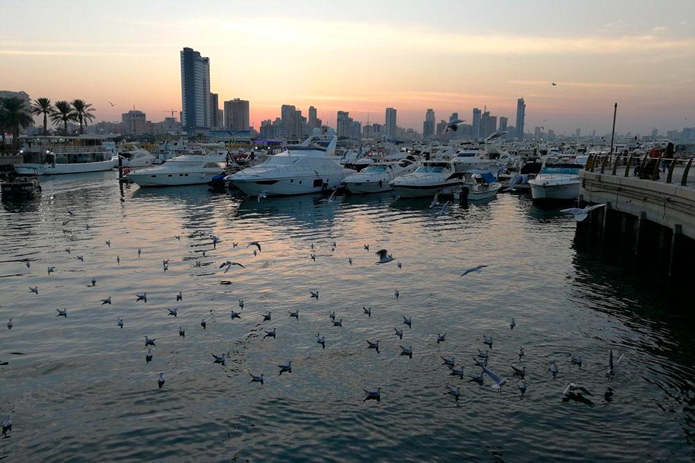 Пристань и набережная района Сальмия — одно из самых популярных мест для прогулок. Тут можно посмотреть на красоту Персидского залива и зайти в кафе и рестораны. Люди гуляют, катаются на велосипедах и роликах, рыбачат либо просто устраивают пикники на газонах вдоль набережной