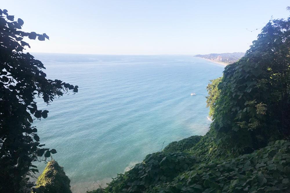 Вид на Черное море из Батумского ботанического сада. Это место, где собрано большое количество местных и экзотических растений. Гулять там — одно удовольствие даже в одиночку. Сад находится в 15 минутах езды от Батуми на общественном транспорте или такси. Вход стоит 15 GEL (360<span class=ruble>Р</span>)