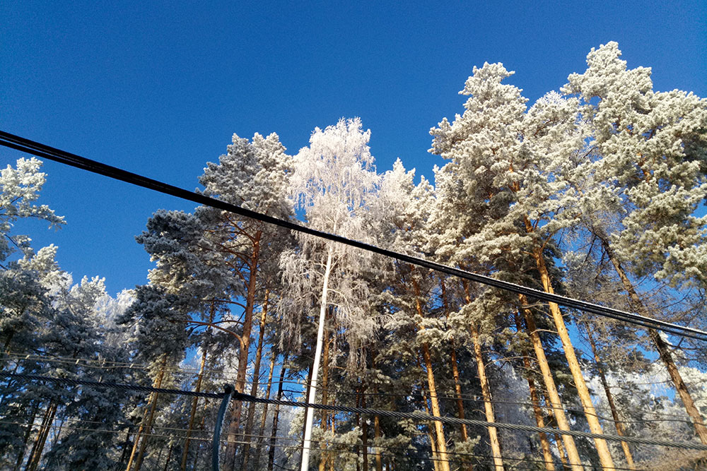 Все горнолыжные курорты расположены в лесистой местности, поэтому тут можно не только кататься, но и наслаждаться шикарными видами природы