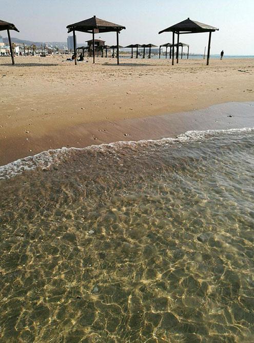 В феврале мы ходили на пляж, температура воды была 18...20 °C