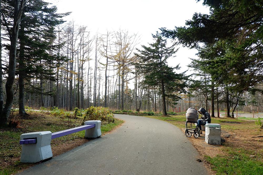 В корсаковском парке свежо и тихо