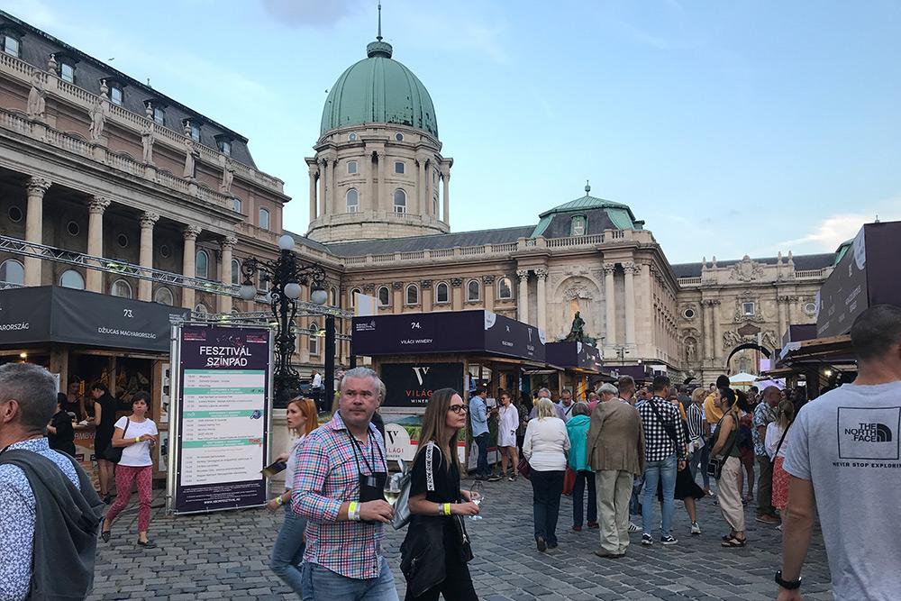 Самый масштабный местный фестиваль вина — Budapest Borfesztivál. Он ежегодно проходит на территории Королевского дворца