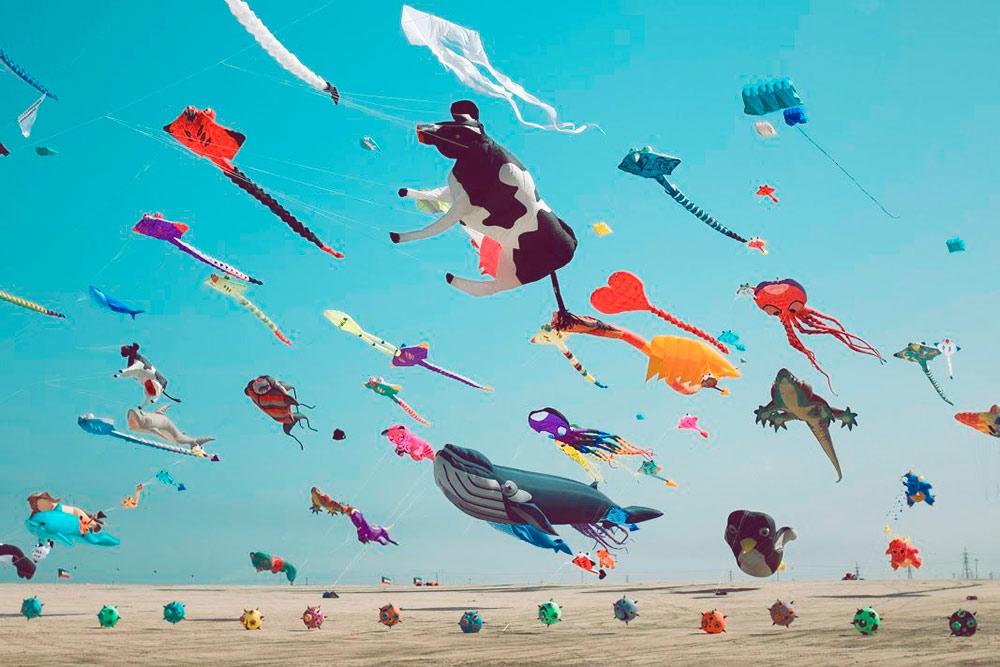 Фестиваль воздушных змеев — ежегодное зимнее мероприятие в пустыне