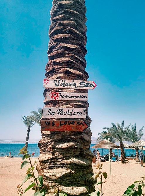 В Иордании дружелюбная атмосфера. Указатели — тому подтверждение