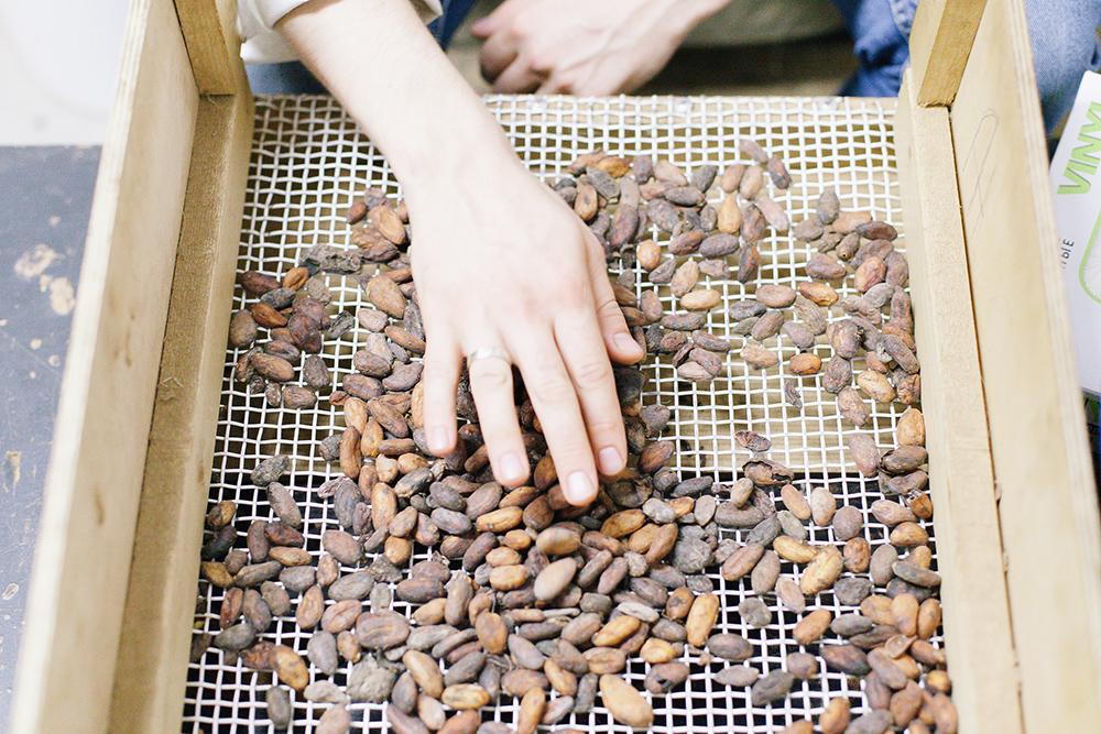 За смену сотрудник перебирает один мешок какао-бобов — 60 килограммов