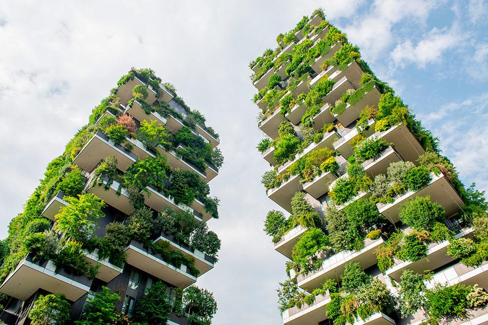 Растения Вертикального леса производят кислород и защищают от выхлопных газов
